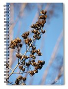 Crepe Myrtle In Blue Spiral Notebook