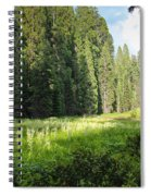 Crescent Meadow In Sequoia Spiral Notebook