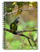 Crested Finchbill 2 Spiral Notebook