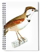 Crested Rustic 2 Spiral Notebook