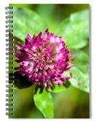 Crimson And Clover Spiral Notebook