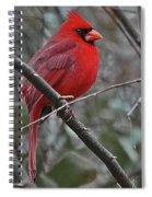 Crimson Cardinal Spiral Notebook