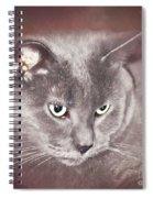 Crimson Dreams Spiral Notebook
