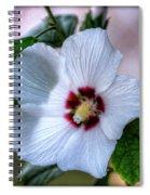 Crimson-eyed Rosemallow Spiral Notebook