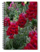 Crimson Snapdragons Spiral Notebook