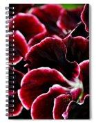 Crimson Propellers Spiral Notebook