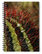 Crimson Thorns 2 Spiral Notebook