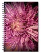 Crispy Fresh Spiral Notebook