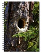 Critter Home Spiral Notebook