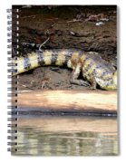 Croc Time Spiral Notebook