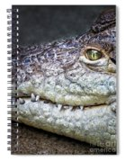 Crocodile Eye Spiral Notebook