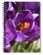 Crocus And Bee Spiral Notebook
