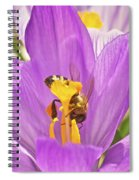 Crocus And The Bee Spiral Notebook