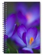 Crocus Blooms Spiral Notebook