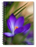 Crocus Light Spiral Notebook