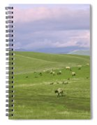 Cross Road Sheep Spiral Notebook