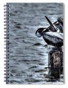 Crossed Bills Spiral Notebook