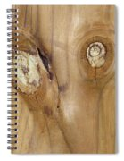 Crosseyed Spiral Notebook