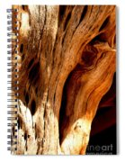 Crossing Texture  Spiral Notebook