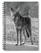 Crossing The Line Spiral Notebook
