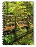 Crossing The Rainforest Ravine Spiral Notebook