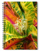 Croton Leaves Spiral Notebook