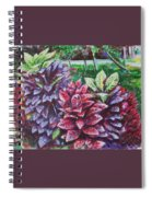 Crotons 1 Spiral Notebook