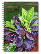 Crotons 2 Spiral Notebook