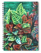 Crotons 3 Spiral Notebook