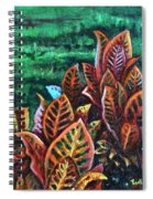 Crotons 4 Spiral Notebook