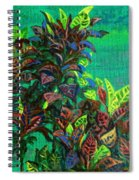 Crotons 7 Spiral Notebook