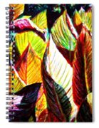 Crotons Sunlit 2 Spiral Notebook