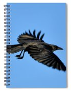 Crow Flyby Spiral Notebook