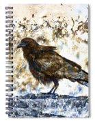 Crow On Blue Rocks Spiral Notebook