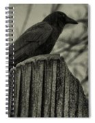Crow Perched On A Old Column In Rain Spiral Notebook