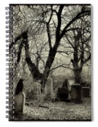 Crow Waits On Tombstone Spiral Notebook