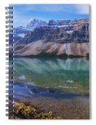 Crowfoot Reflection Spiral Notebook