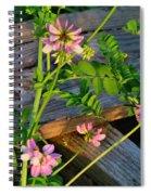 Crown Vetch 2 Spiral Notebook