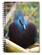 Crowned Spiral Notebook