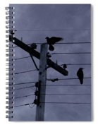 Crows And A Crescent Moon Spiral Notebook