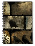 Crows And One Rabbit Spiral Notebook