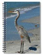Cruising The Beach Spiral Notebook