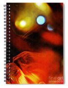 Crystal Ball Project 25 Spiral Notebook