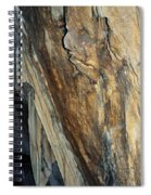 Crystal Cave Walls Spiral Notebook