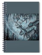 Crystal Cavern Procession Spiral Notebook