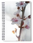 Crystal Sprout Spiral Notebook