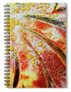 Crystal Sunburst Spiral Notebook