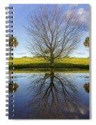 Crystal Waters Spiral Notebook