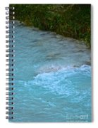 Crystal Waters Spiral Notebook