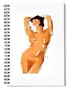Cubism Series 24 Spiral Notebook